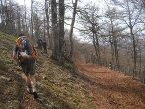 Camino de Santiago Hiking