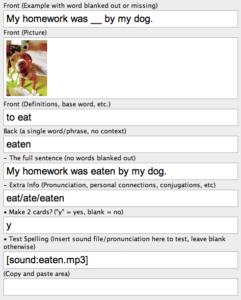 Fluent Forever Anki Screenshot